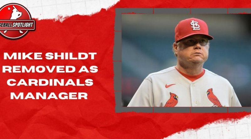 Mike Shildt Removed as Cardinals Manager
